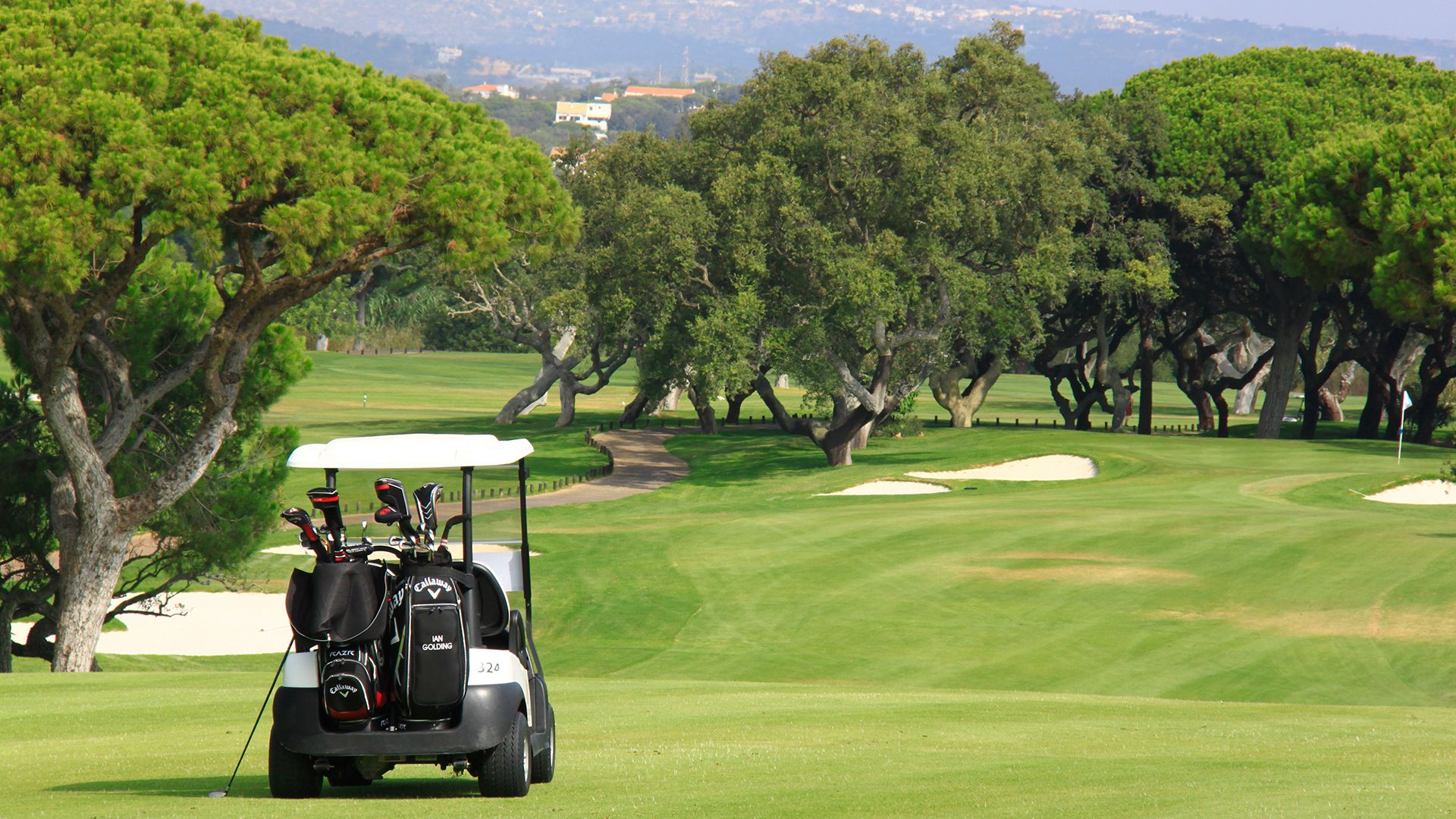 Algarve Golf Buggy